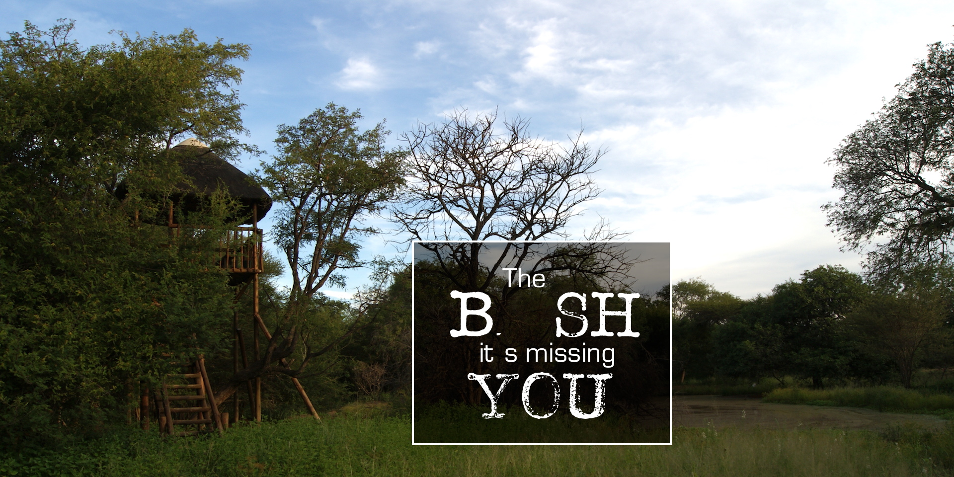 Hoedspruit Wildlife Estate Accommodation